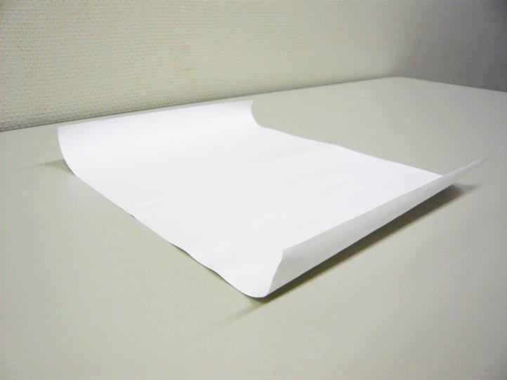 横目の用紙