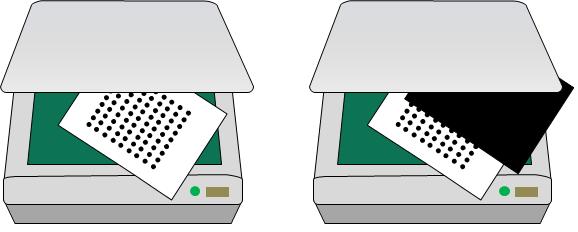 通常のスキャン(左)と黒い紙を用いたスキャン(右)画像