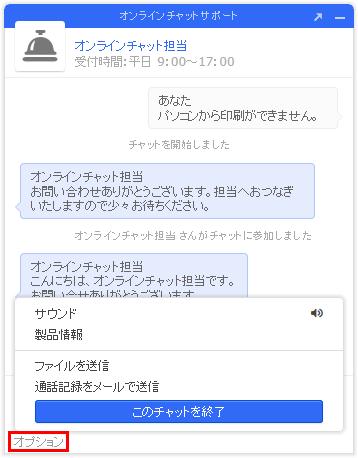 オンラインチャットオプション選択時の画像